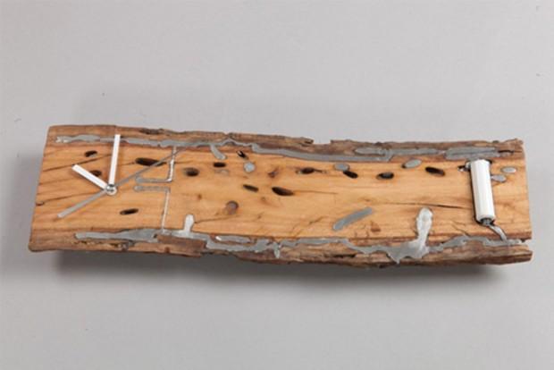 Коллекция со следами насекомых