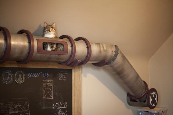 Кошачий тоннель в домашнем офисе