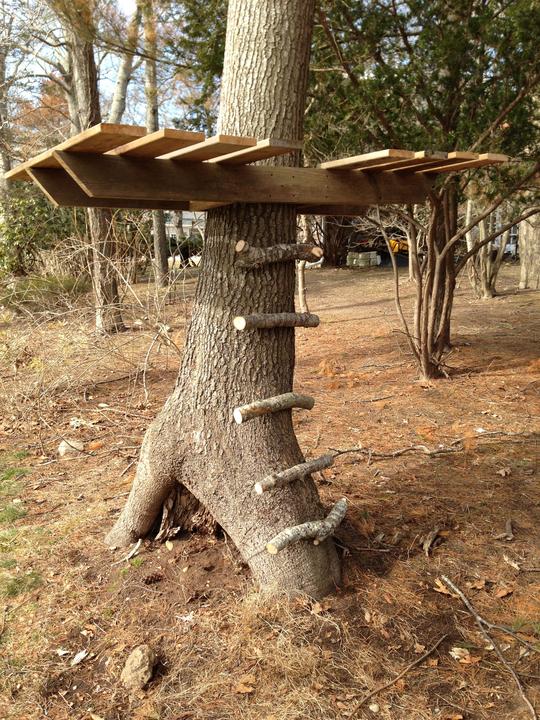 Домики на деревьях для детей своими руками фото