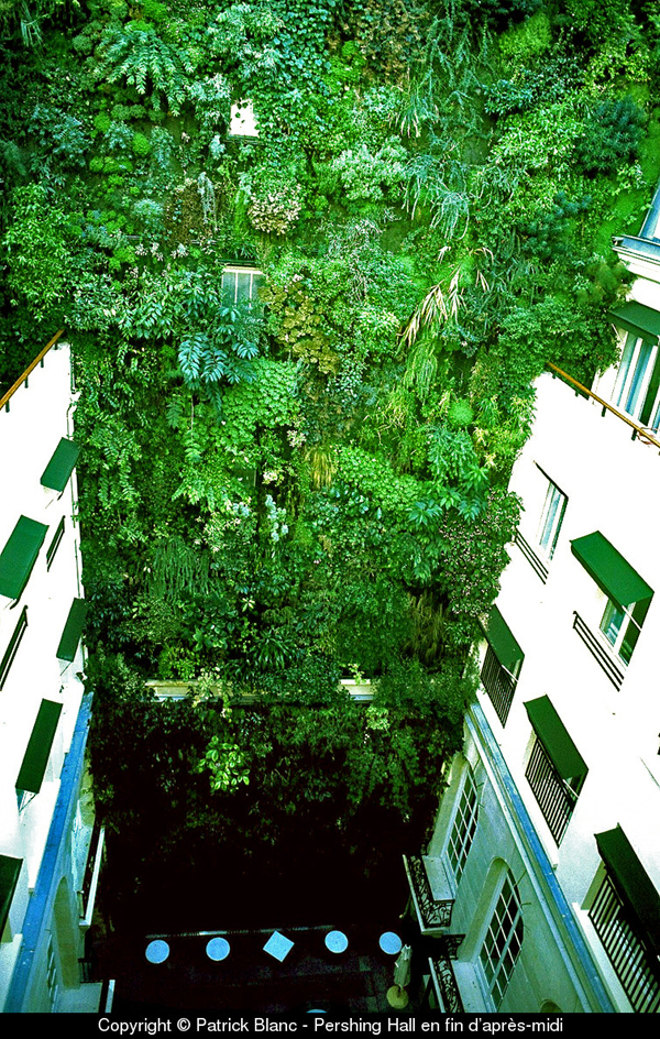 Вертикальные сады Патрика Бланша