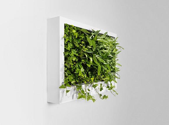 Зелёные экраны