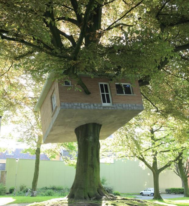 Скошенный балок на дереве